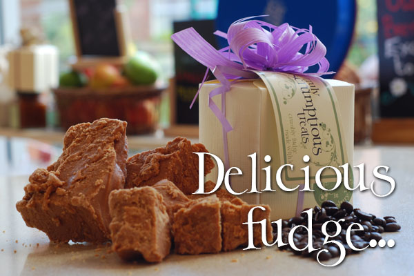 Delicious fudge